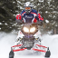 Polaris 800 SWITCHBACK PRO-X фото
